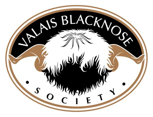 Welcome to the Valais Blacknose Society