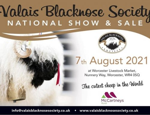 VBS National Show and Sale Worcester